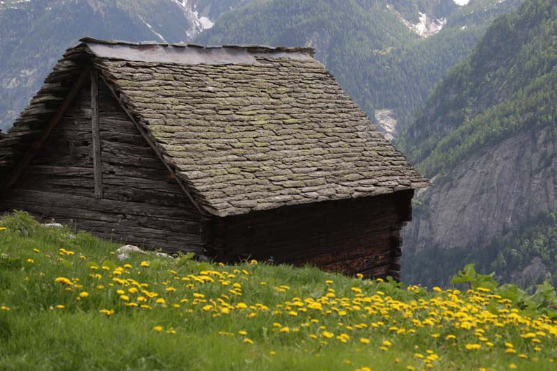 Anzasca, hut with a stone roof