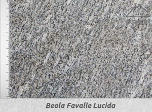 beola favalle lucida